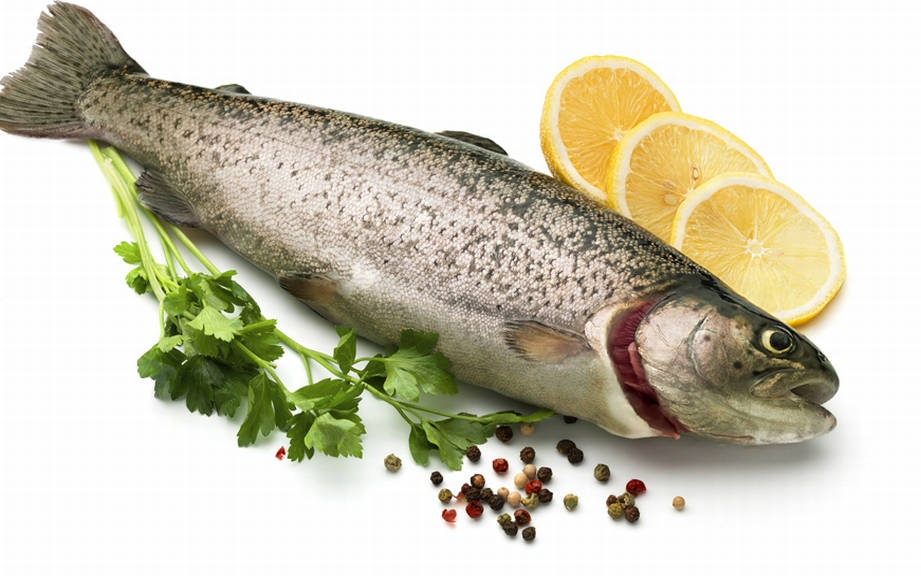 Definition Fisch